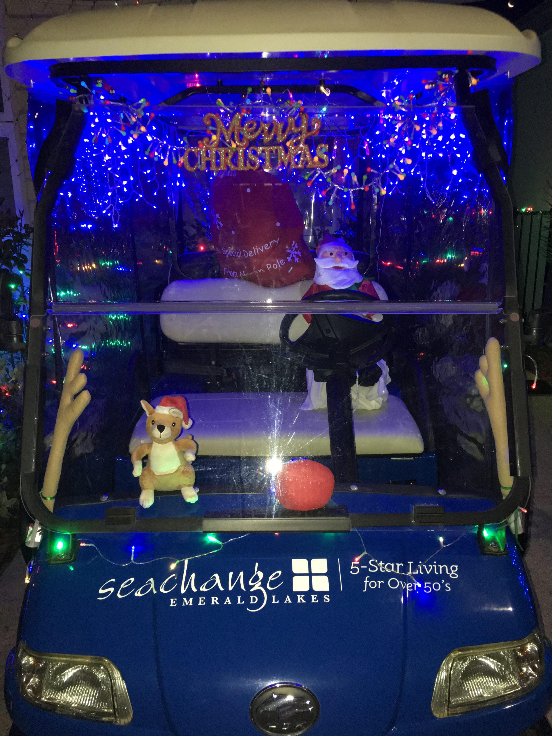 decorated-buggy